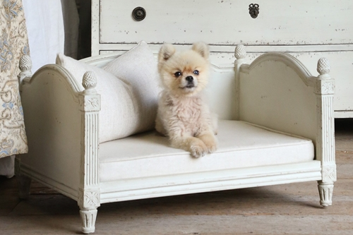 antique dog bed